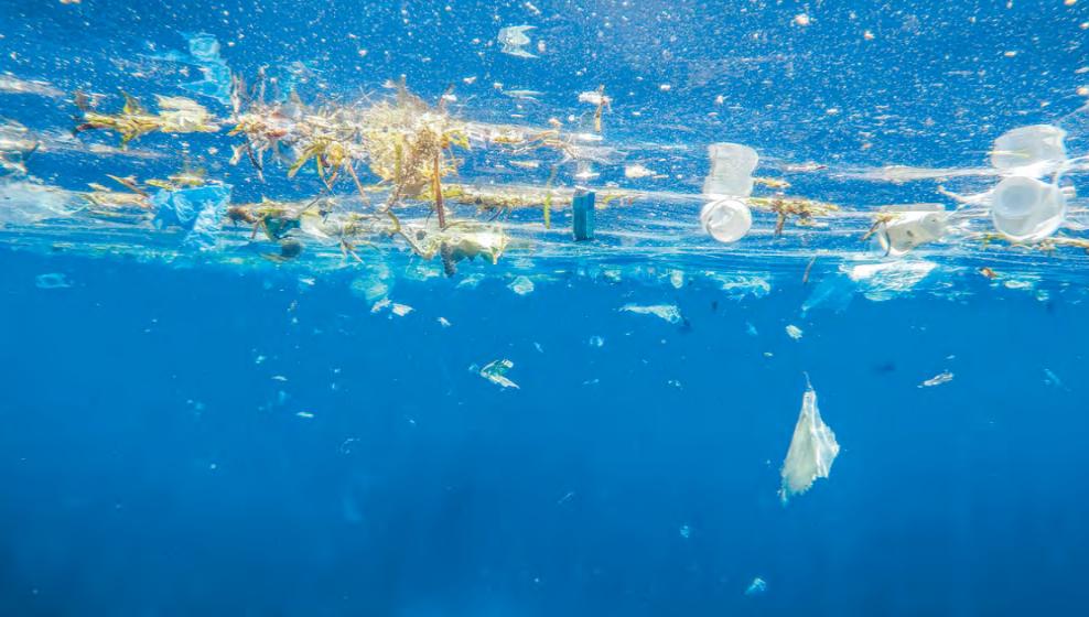 Resultado de imagen de un mar de plasticos libro geir wing